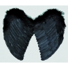 Ailes ange plumes noires