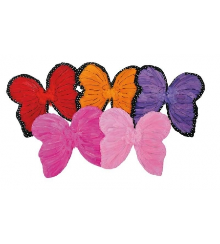 Butterfly feather wings