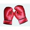 Boxer par luvas