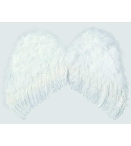 """White angel""""s wings feathers"""