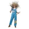 Female farmer costume