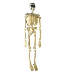 Skeleton fluorescent decoration item