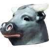 Bull big-head