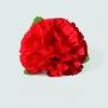 Clip clavel rojo
