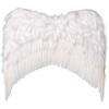 Ailes ange plumes